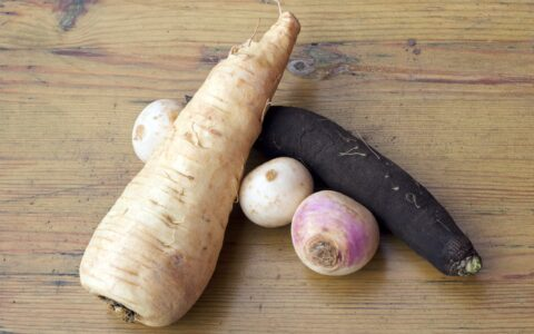 A parsnip, and other vegetables - Sara Maternini - cc