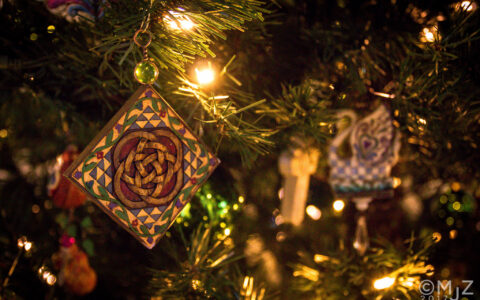 A Christmas tree in Ireland - MjZ Photography - cc
