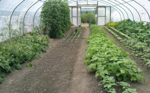 The Organic Centre of Rossinver - karenandkerry - cc