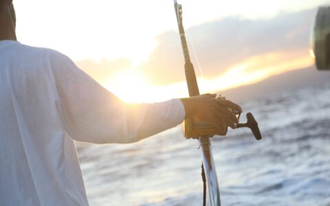 Sea fishing - Public domain
