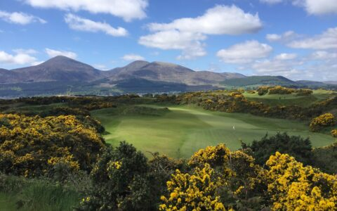 The Royal County Down Golf