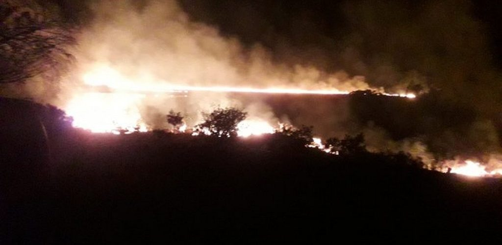 Killarney National Park was the victim of a fire last night.