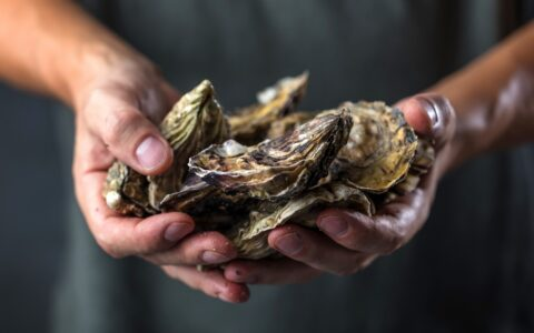 The oysters of Carlingford